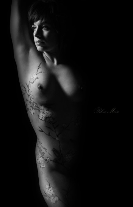 Blue Muse Fine Art  - bodypaint - Cherry Blossoms