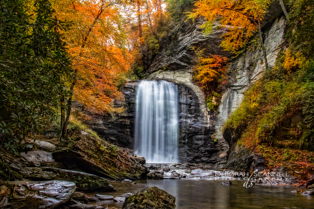Looking Glass Falls Wallpaper Looking Glass Falls In Autumn Blue Ridge Parkway Daily
