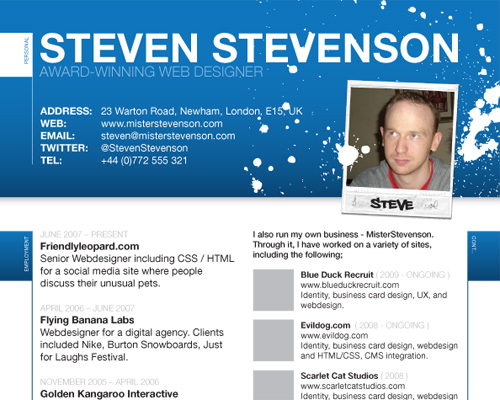 10 Web Designers Create a Resume Blue Sky Resumes Blog - web design resume