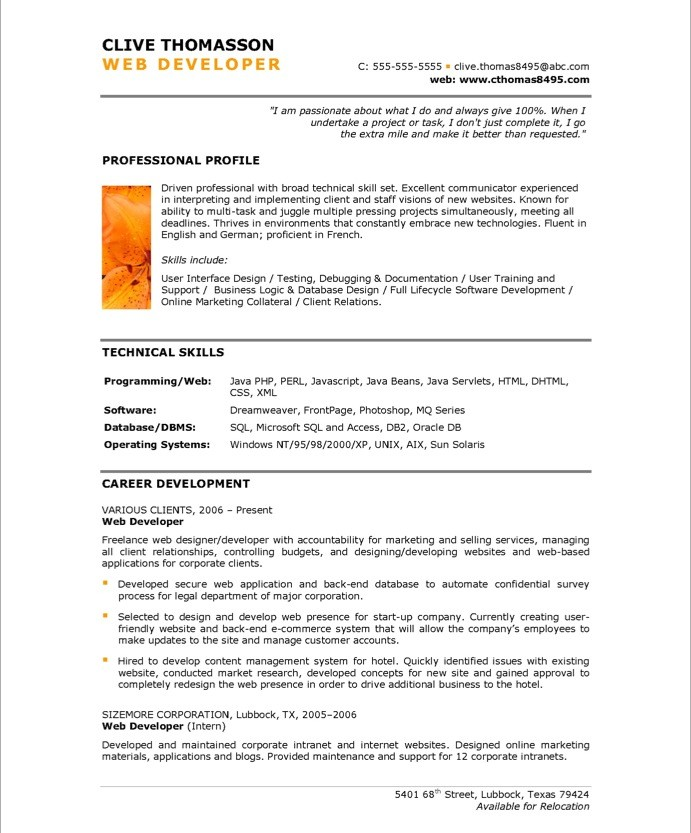 Web Developer Free Resume Samples Blue Sky Resumes - experience resume sample