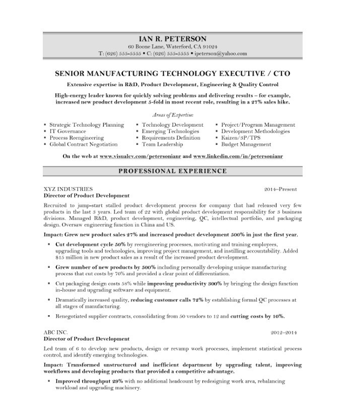 Chief Technology Officer Free Resume Samples Blue Sky Resumes - Technology Resume