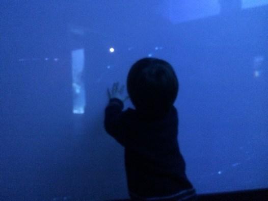 abysses-aquarium-la-rochelle-02
