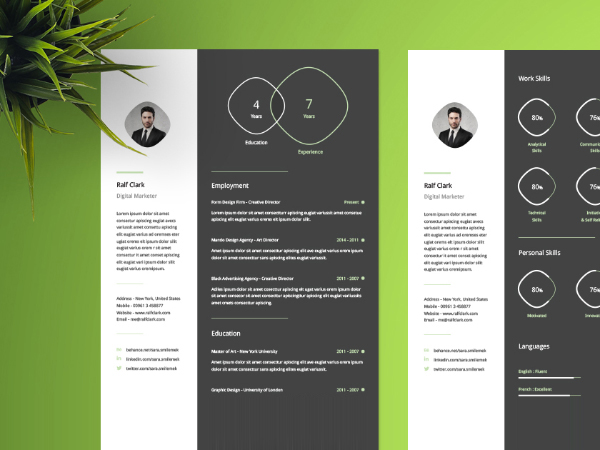 4 Page Resume Template Download - modern resume format