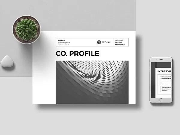Free Company Profile Template