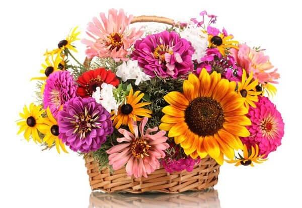 Blumenstrausse Im Sommer Blumenversand Edelweiss