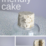 Baby Friendly Cake