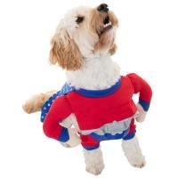 Dogs Superhero Costume