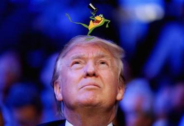 trump-frog
