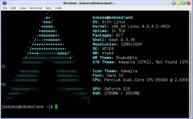 screenfetch-terminal