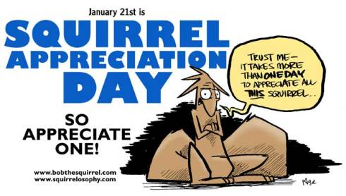 Squirrel Appreciation Day 2014