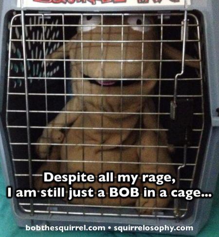 01292015_bob_cage