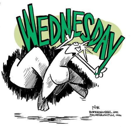 Wednesday Bob the Squirrel blast