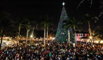 100-ft-christmas-tree-in-delray-beach