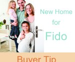 new-home-for-fido