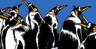 pingouins_une