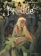 brindille_couv