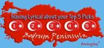 Waxing Lyrical Logo for BPTG