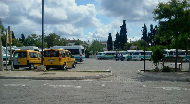 Turgutreis Dolmuş Timetable & Routes