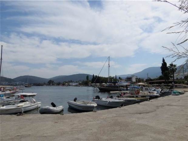 Golkoy Harbour