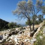 Pedesa Ruins near Bodrum Turkey
