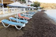 Ozak Accommodation & Restaurant Bodrum Turkey