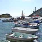 sue gumusluk harbour