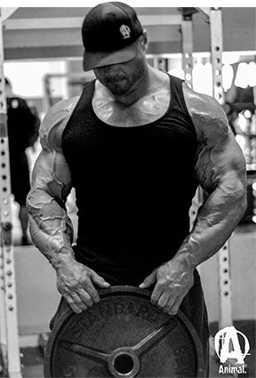 Animal Pak Wallpaper Backing It Up Back Training And Motivation With Frank Mcgrath