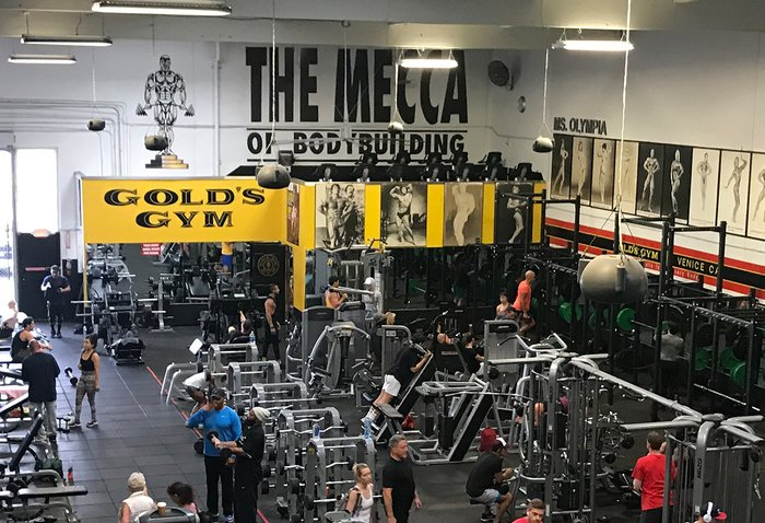 6 Life Lessons from Working at Gold\u0027s Gym Venice