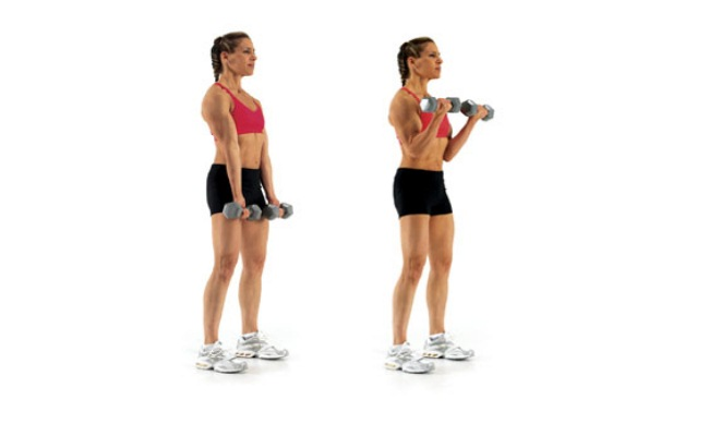 Dumbbell Curl 2