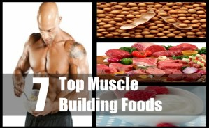 Muscle Building Foods