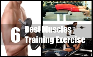 Muscles Training Exercise