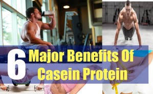 6 Major Benefits Of Casein Protein