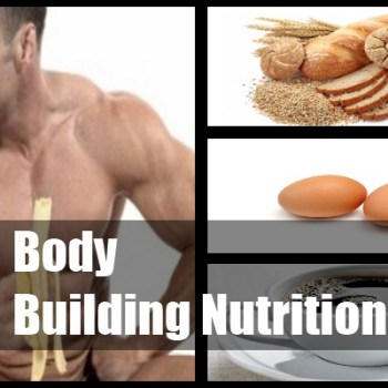 Body Building Nutrition Plan