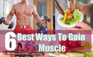 6 Best Ways To Gain Muscle