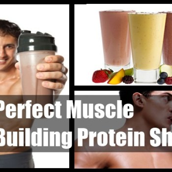 Choosing The Perfect Muscle Building Protein Shake