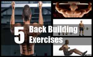 Back Building Exercises