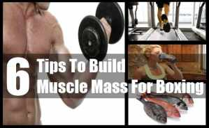Build Muscle Mass For Boxing