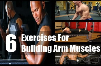 Building Arm Muscles