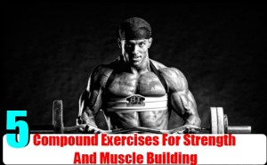 Compound Exercises For Strength And Muscle Building