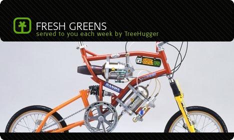 fresh green september 8 image