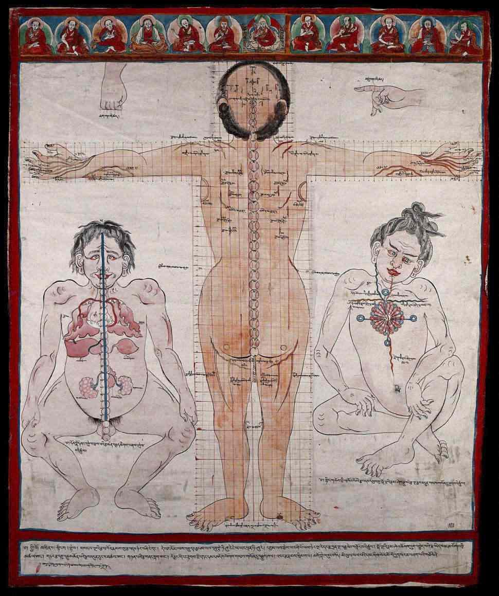 tibetan body mori.jpg