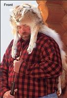 Coyotehat