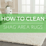How-to-Clean-Shag-Area-Rugs  %Image Name
