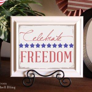 Celebrate-Freedom-3