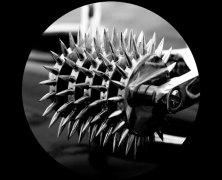 The Wartenberg Five Head Pinwheel