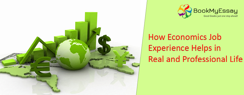 How Economics Job Experience Helps in Real and Professional Life