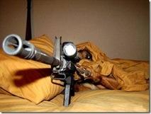 Guard dog 7