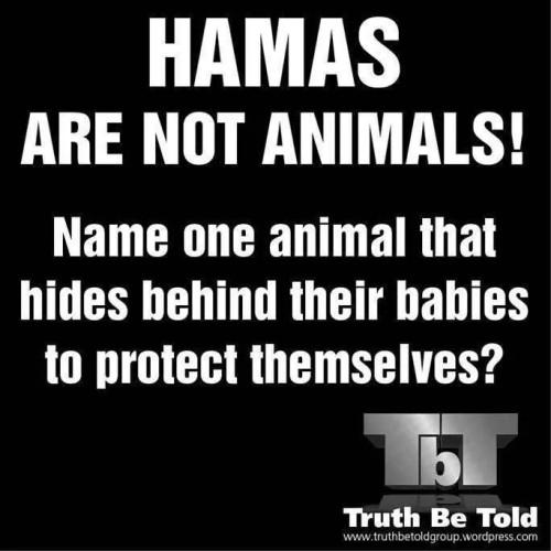 Hamas are not animals