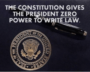 Constitution President Write Law