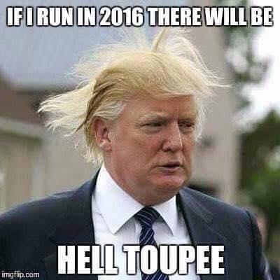Donald Trump Toupee